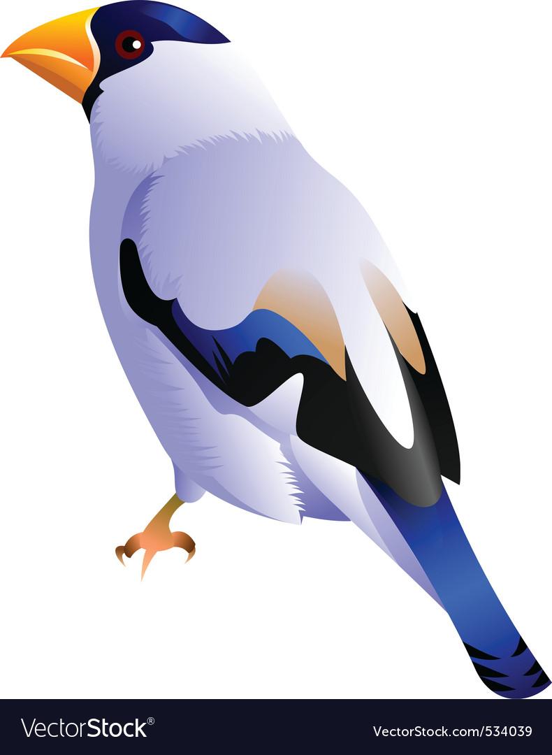 White bird vector | Price: 1 Credit (USD $1)