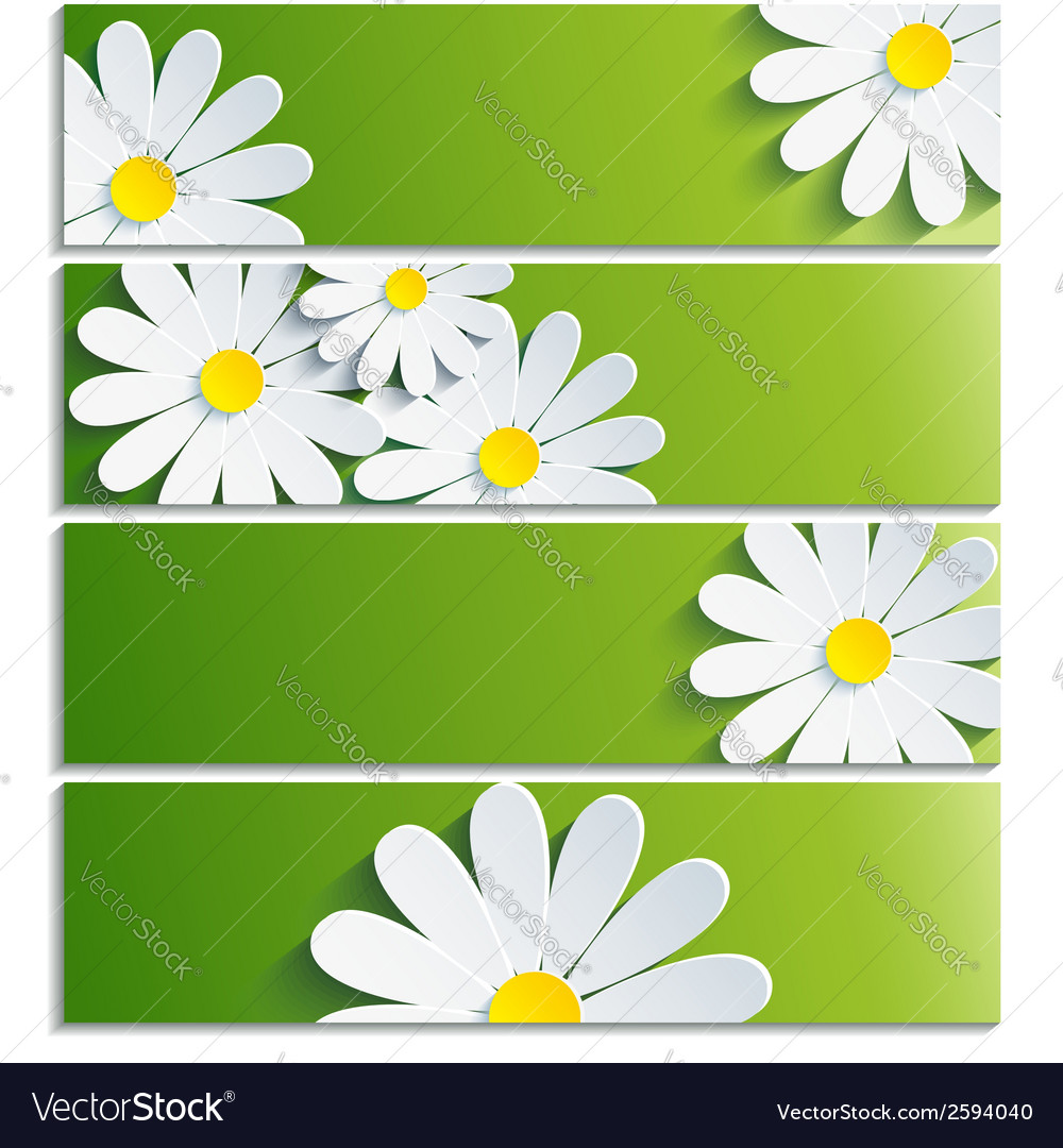 Set of banners with 3d flower chamomile vector | Price: 1 Credit (USD $1)