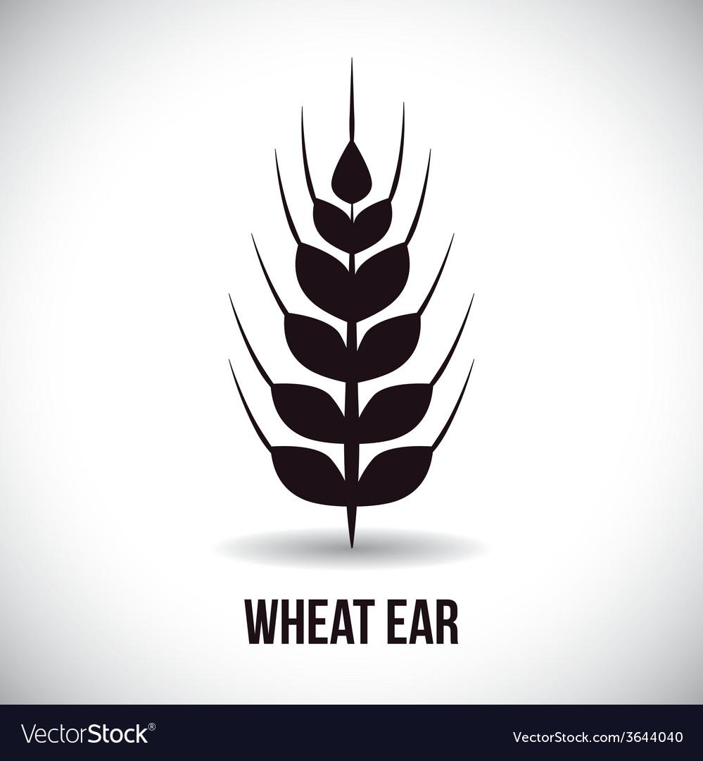 Wheat ear vector | Price: 1 Credit (USD $1)