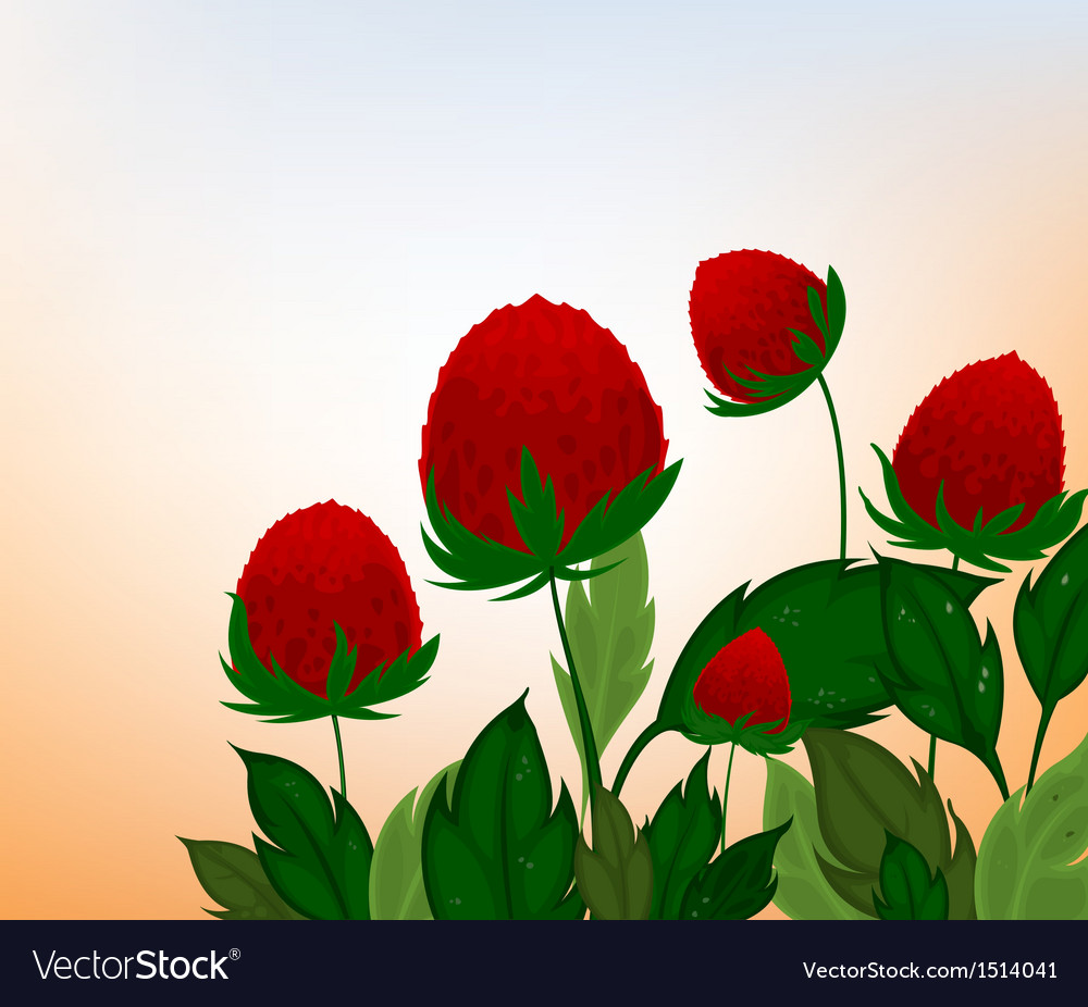 Amaranth flowers cartoon background vector | Price: 1 Credit (USD $1)
