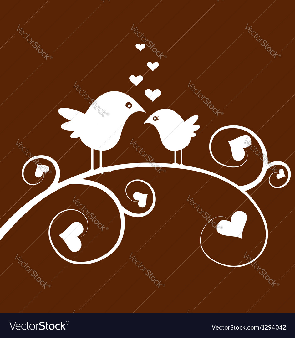 Love birds on a branch vector