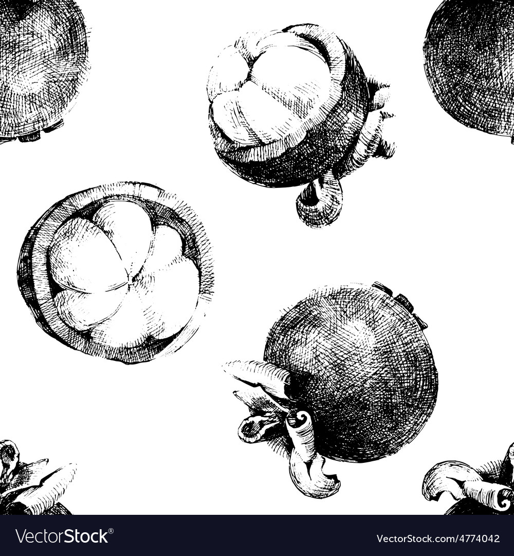 Seamless pattern with mangosteen vector | Price: 1 Credit (USD $1)