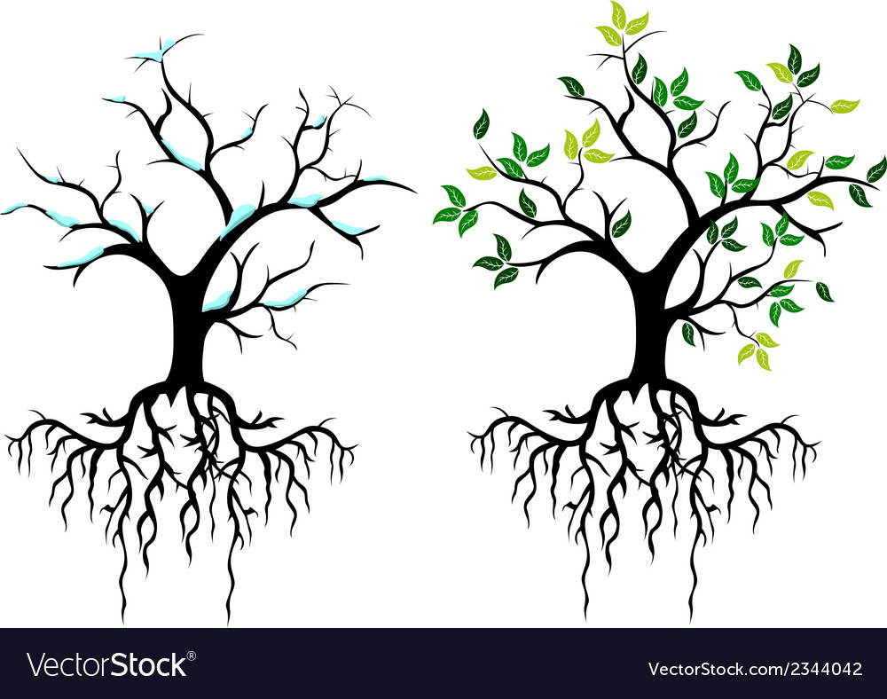 Tree for you design vector | Price: 1 Credit (USD $1)