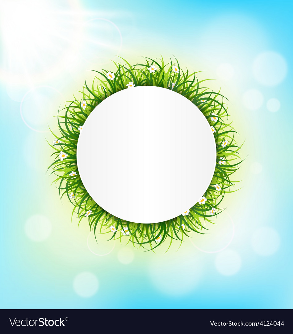 Circle frame with green grass chamomiles and vector | Price: 1 Credit (USD $1)