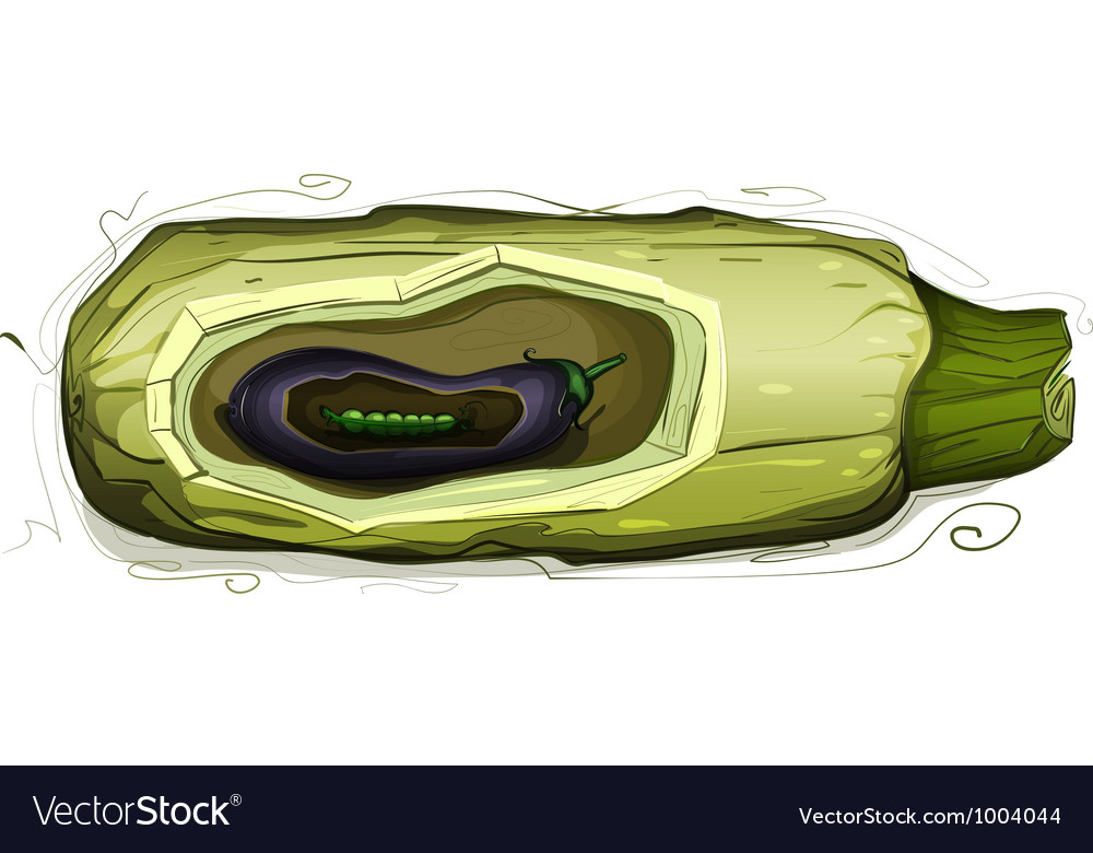 Marrow eggplant pea pod still life vector | Price: 1 Credit (USD $1)