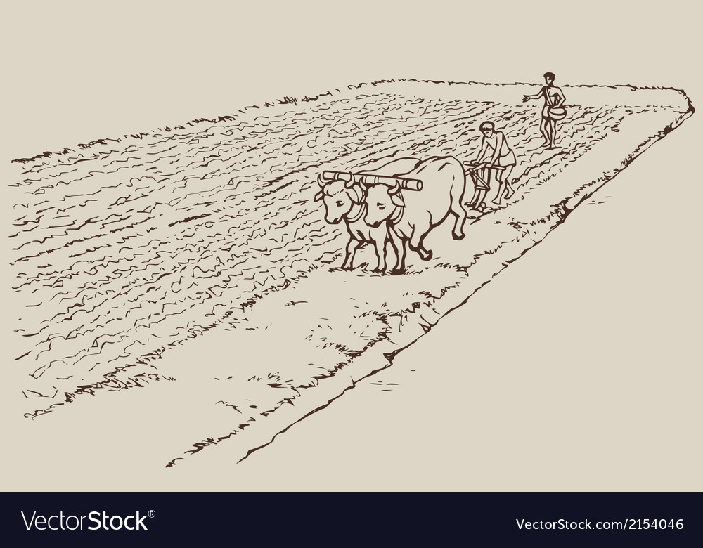 Primitive agriculture vector | Price: 1 Credit (USD $1)