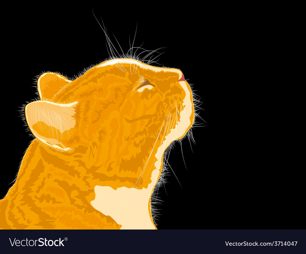 Cat smells spring flavors on black background vector | Price: 1 Credit (USD $1)