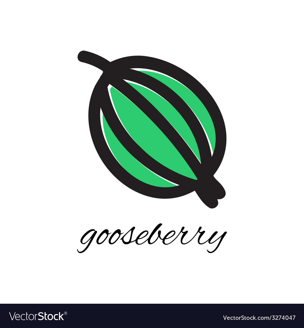 Doodle gooseberry vector | Price: 1 Credit (USD $1)
