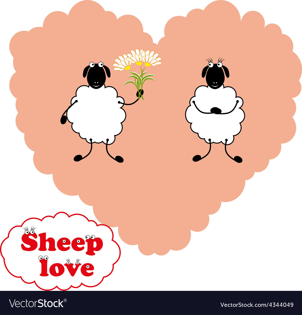 Sheep love vector | Price: 1 Credit (USD $1)