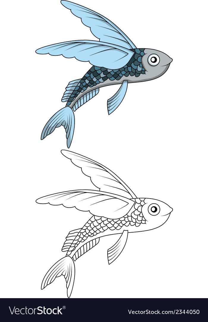 Flying fish for you design vector | Price: 1 Credit (USD $1)