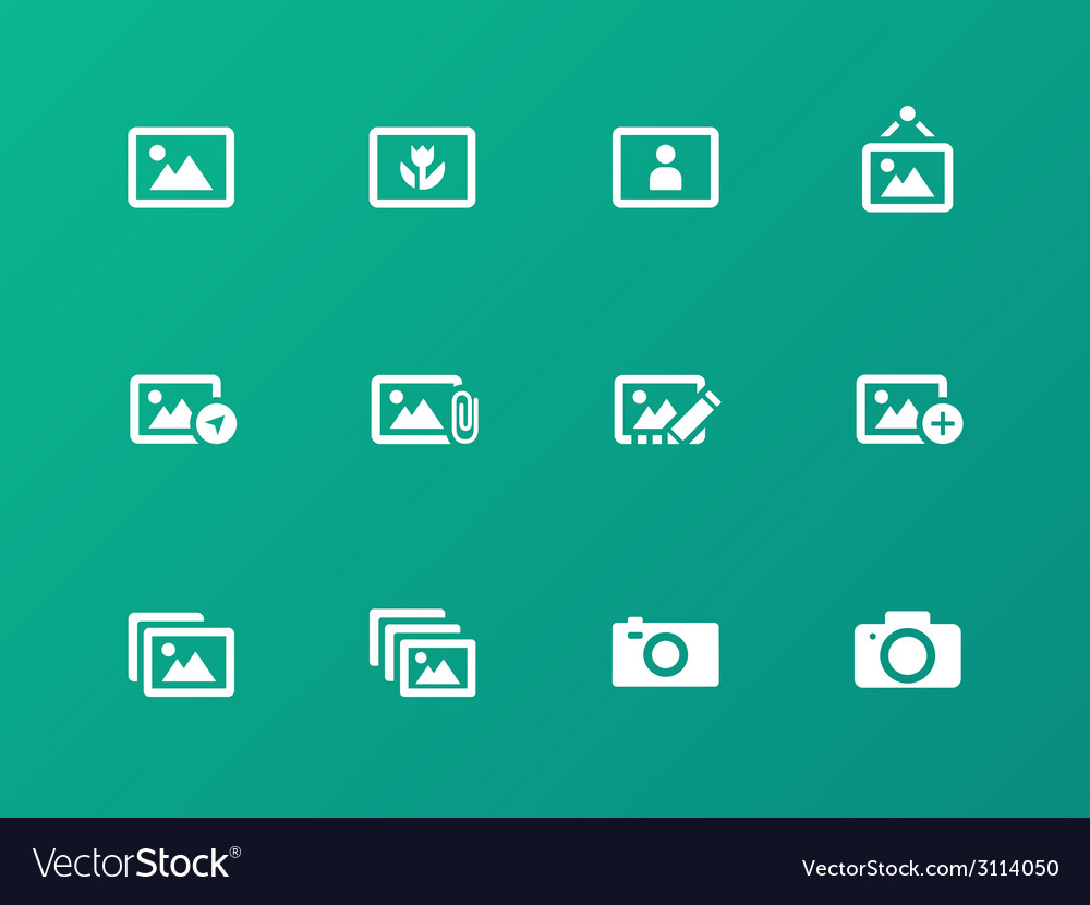 Photographs and camera icons on green background vector   Price: 1 Credit (USD $1)