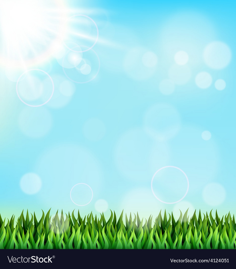 Green grass lawn with sunlight on blue sky floral vector | Price: 1 Credit (USD $1)