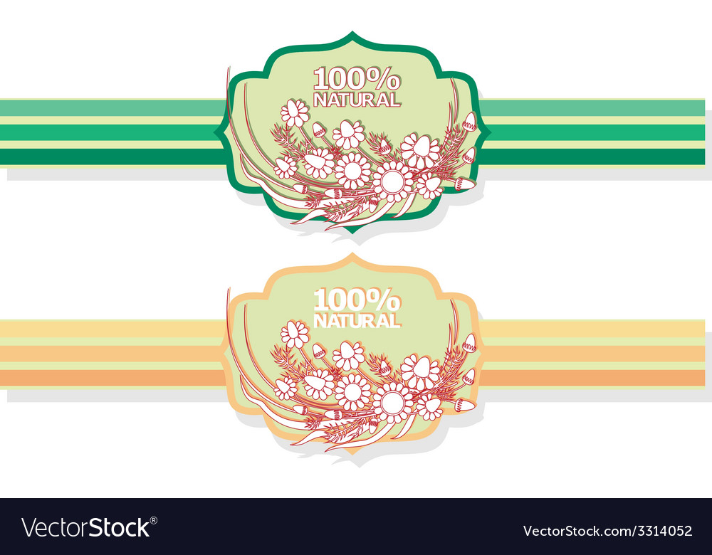 Label with floral pattern vector | Price: 1 Credit (USD $1)