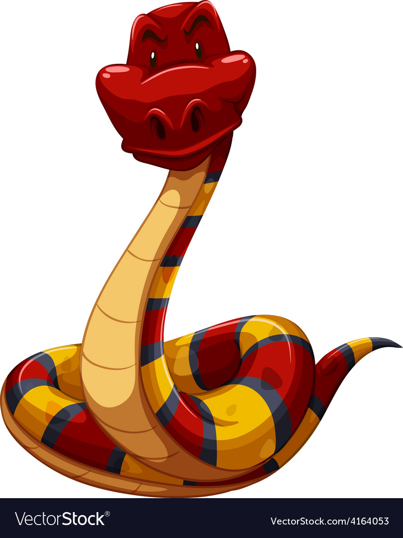Colourful snake vector | Price: 1 Credit (USD $1)