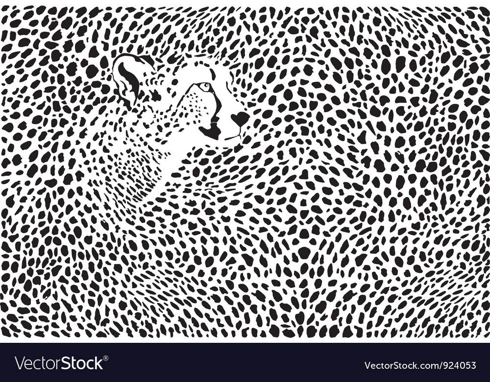 Pattern cheetahs background vector | Price: 1 Credit (USD $1)