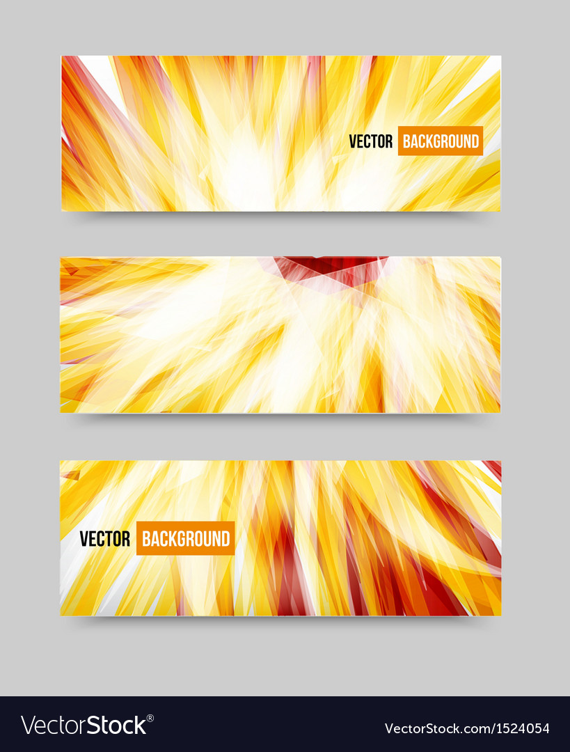 Flower set banner  brochure template vector | Price: 1 Credit (USD $1)