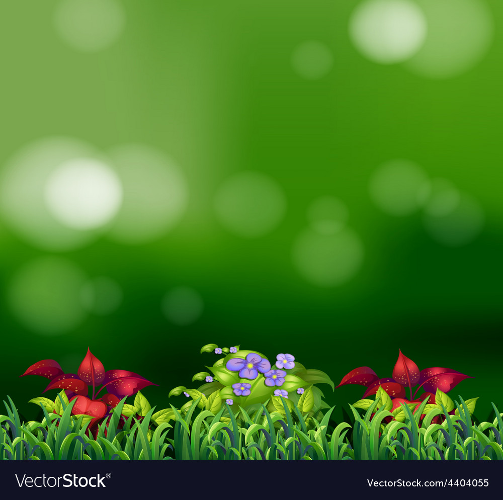 Green grass vector | Price: 3 Credit (USD $3)