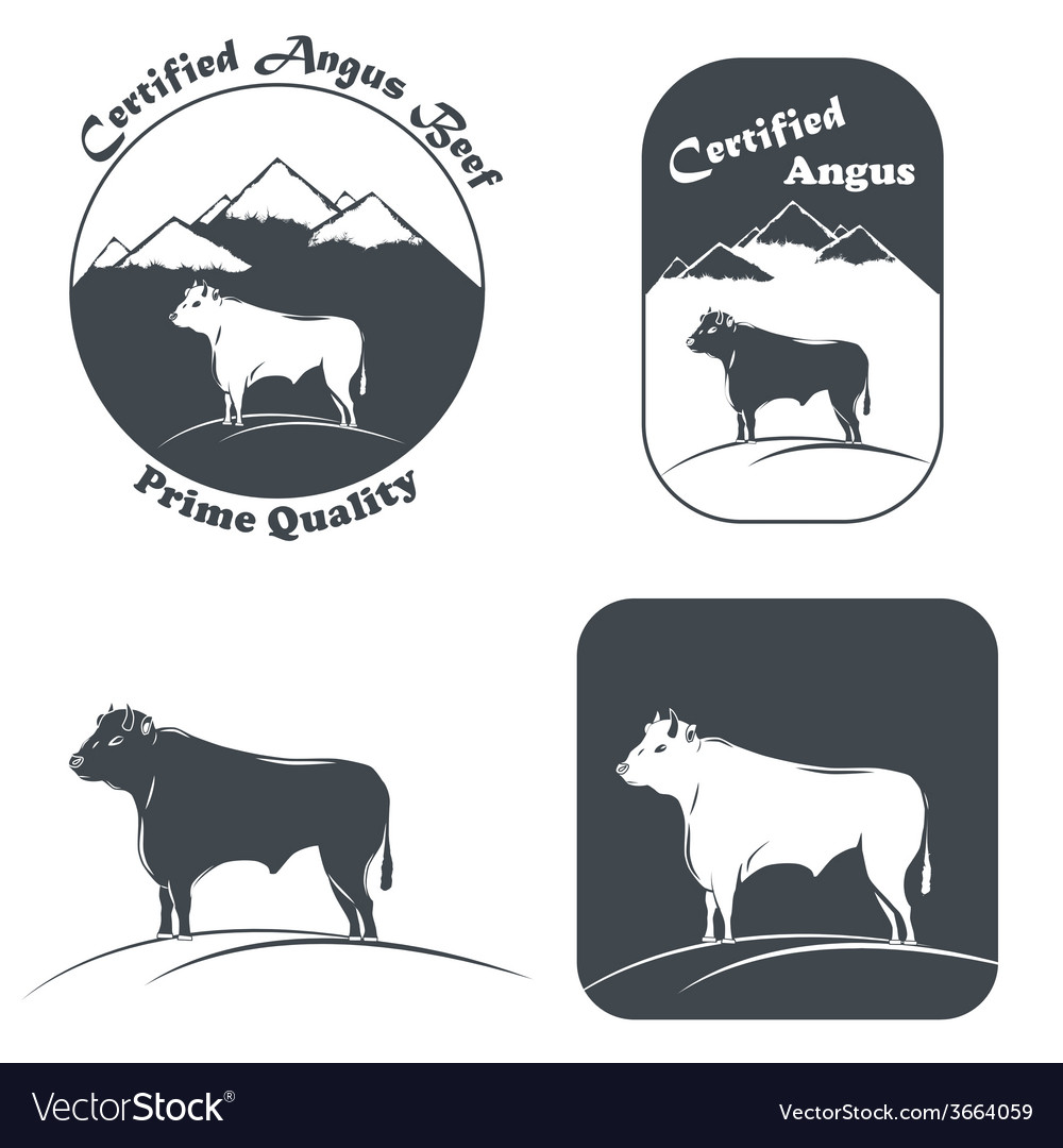 Angus bull in white and black vector | Price: 1 Credit (USD $1)