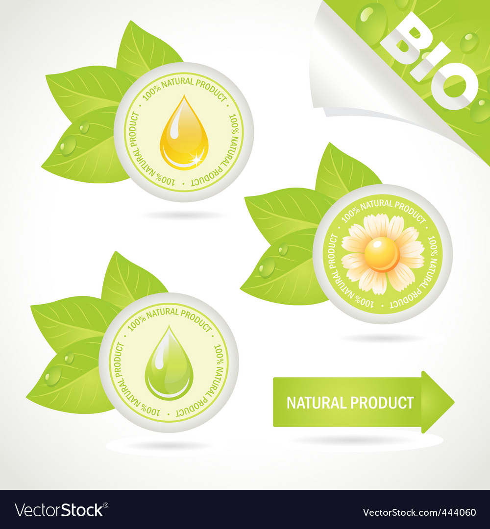 Concept elements natural product vector | Price: 1 Credit (USD $1)