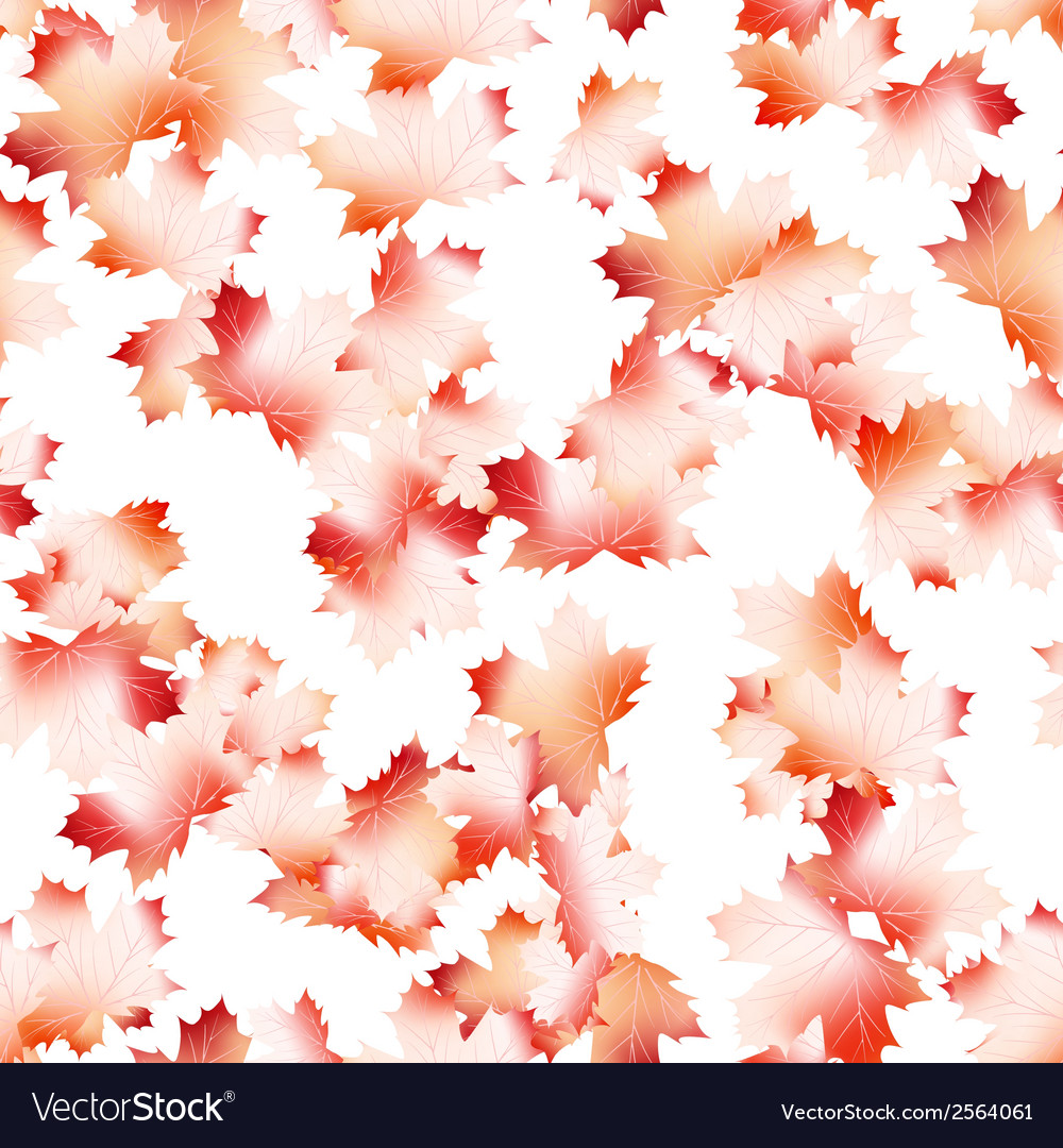 Autumn maple leaves pattern background eps 10 vector | Price: 1 Credit (USD $1)