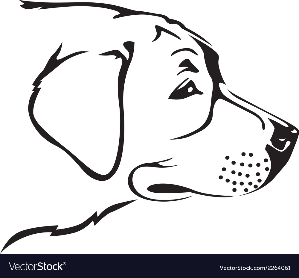 Retriver dog vector | Price: 1 Credit (USD $1)