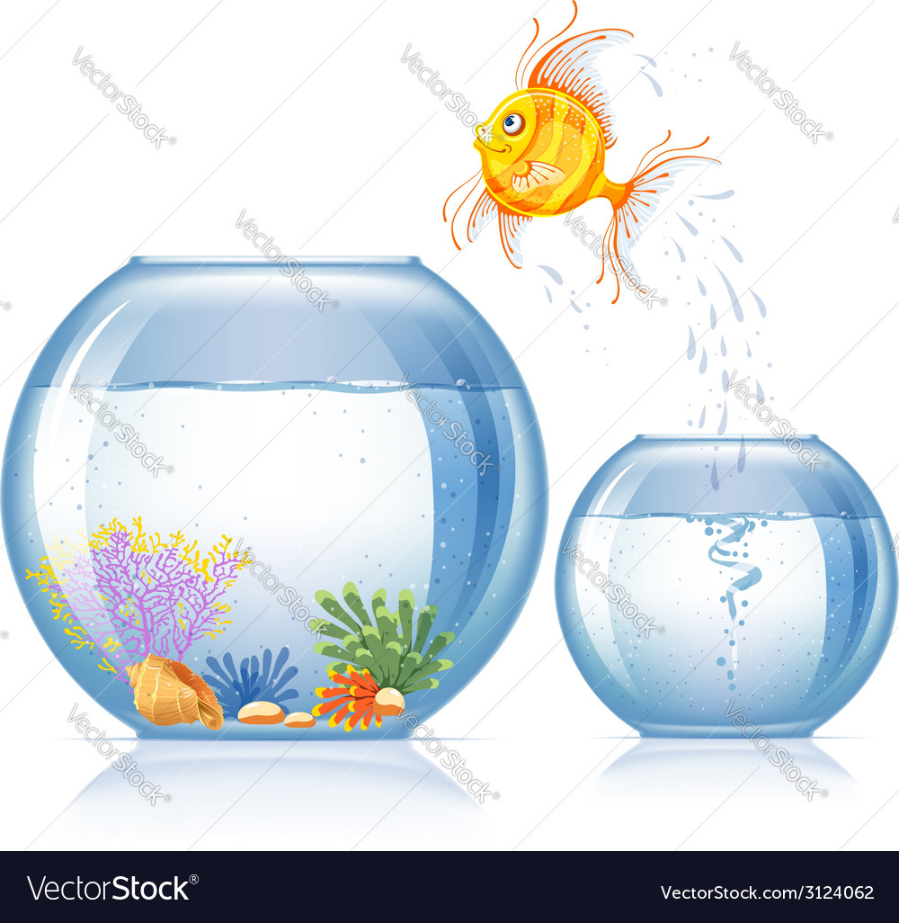 Aquarium and fish vector | Price: 1 Credit (USD $1)