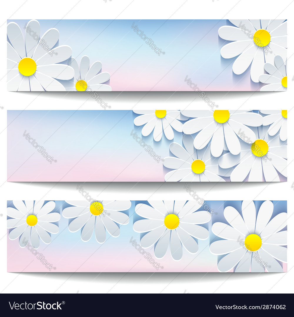 Set of banners with decorative flower chamomile vector | Price: 1 Credit (USD $1)