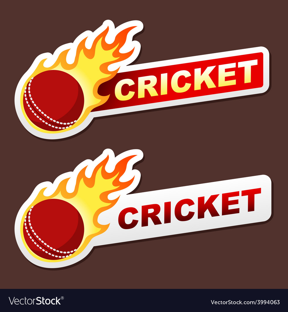 Cricket flame sticker banner label tag vector | Price: 1 Credit (USD $1)