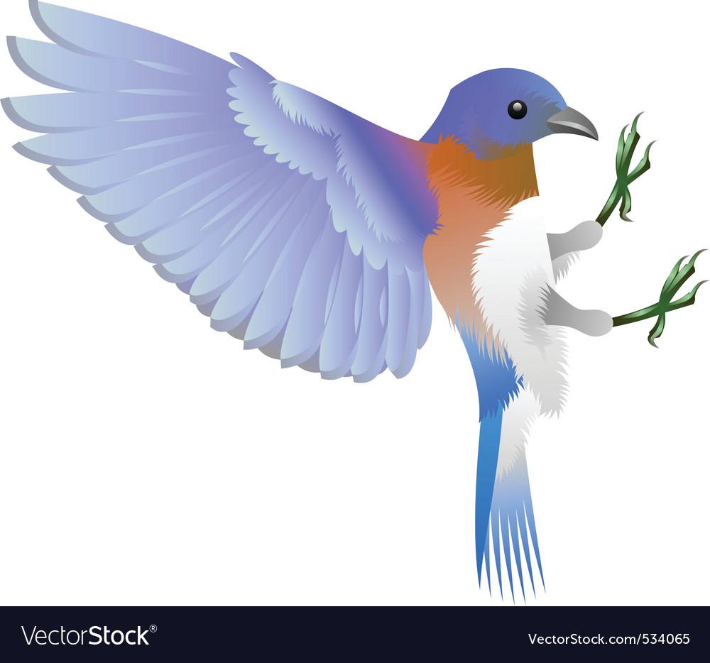Bird vector | Price: 3 Credit (USD $3)