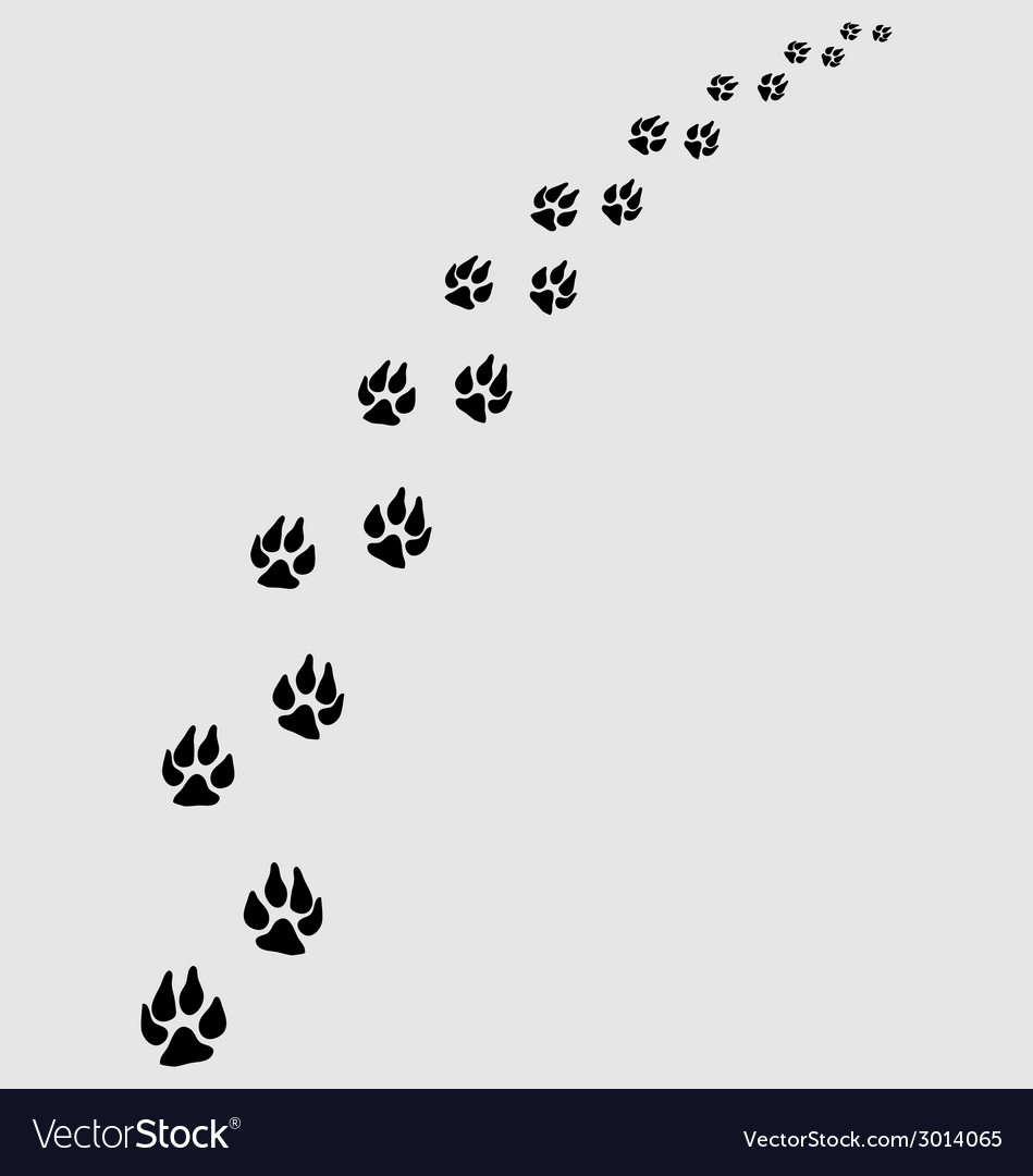 Dogs footprints vector | Price: 1 Credit (USD $1)