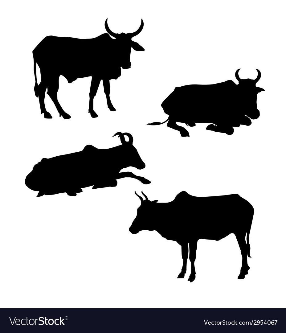 Cows vector | Price: 1 Credit (USD $1)
