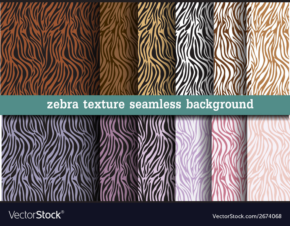 Animal print zebra texture seamless background vector | Price: 1 Credit (USD $1)