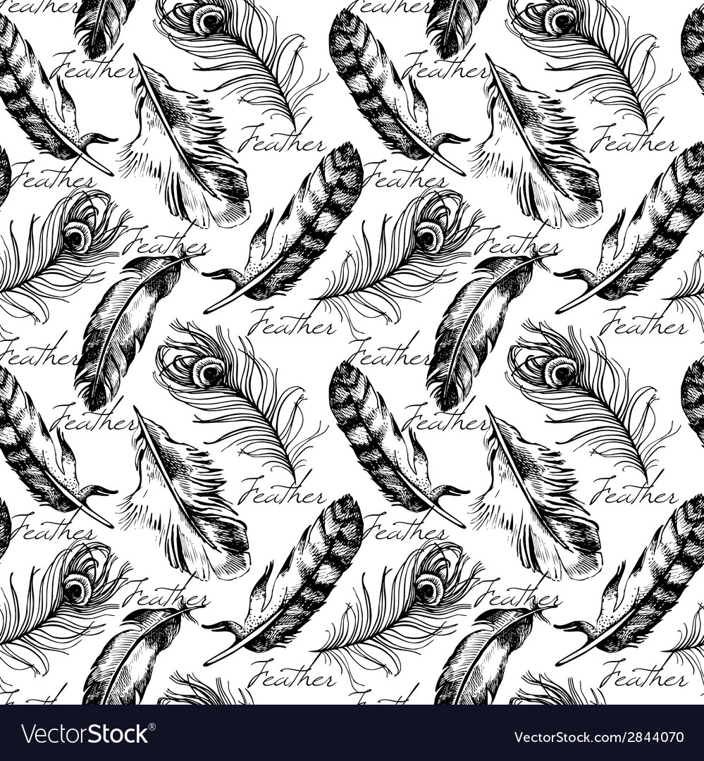 Vintage feather seamless pattern vector | Price: 1 Credit (USD $1)