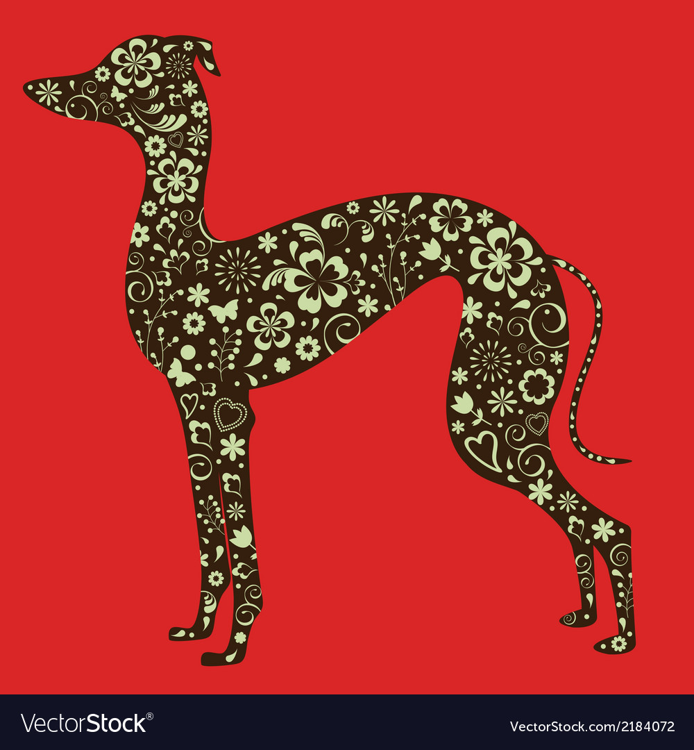 Floral greyhound silhouette vector | Price: 1 Credit (USD $1)