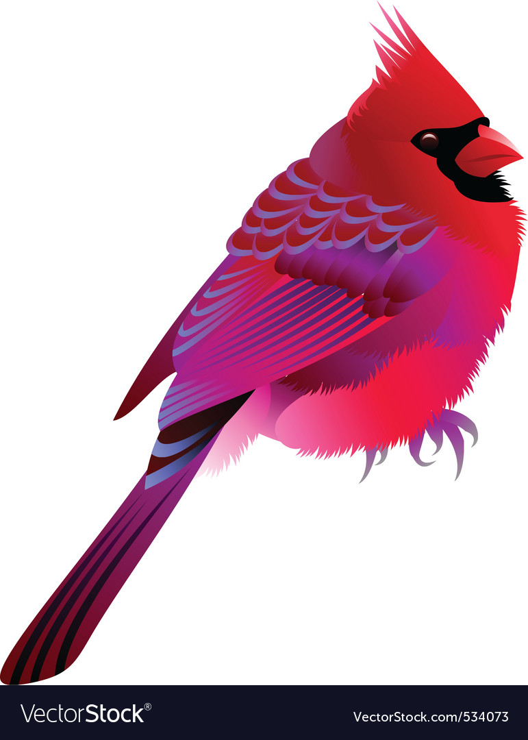 Bird vector | Price: 3 Credit (USD $3)