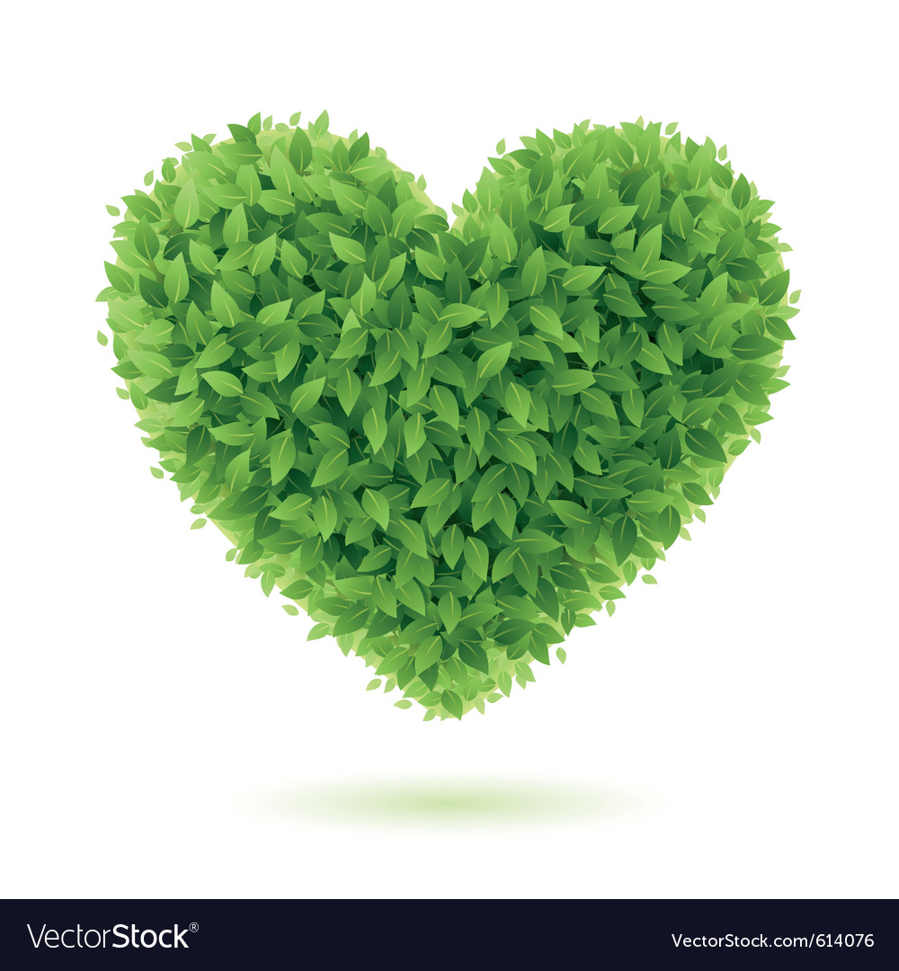 Heart symbol of green leaves vector | Price: 3 Credit (USD $3)