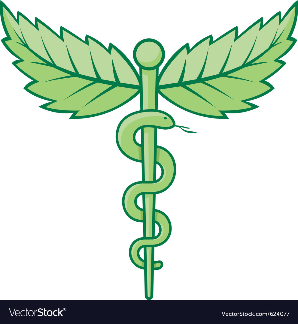 Caduceus with leaves vector | Price: 1 Credit (USD $1)