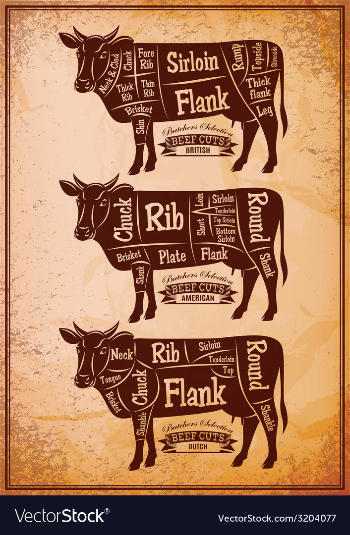 Poster with three different diagram cutting cows vector   Price: 1 Credit (USD $1)