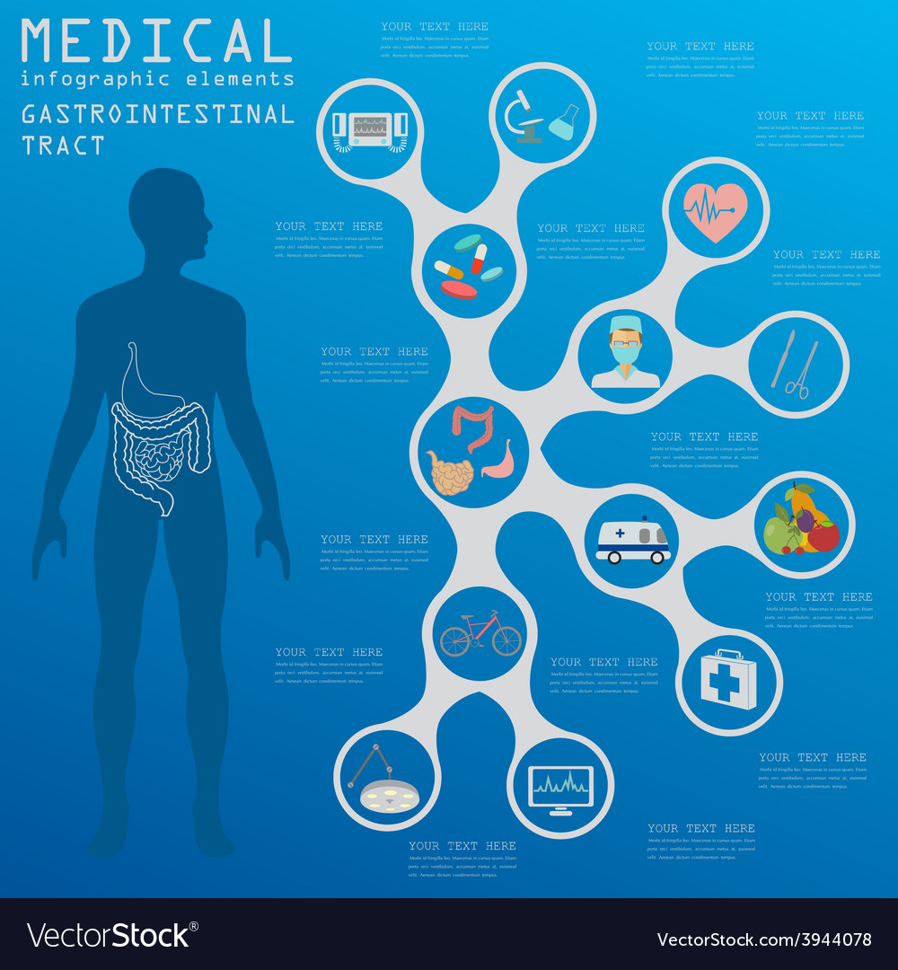 Medical and healthcare infographic vector | Price: 1 Credit (USD $1)