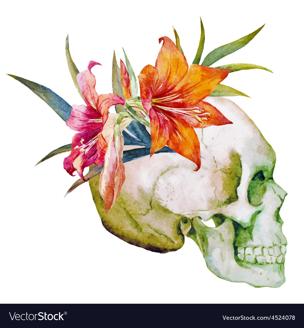 Watercolor skull with flowers vector | Price: 1 Credit (USD $1)