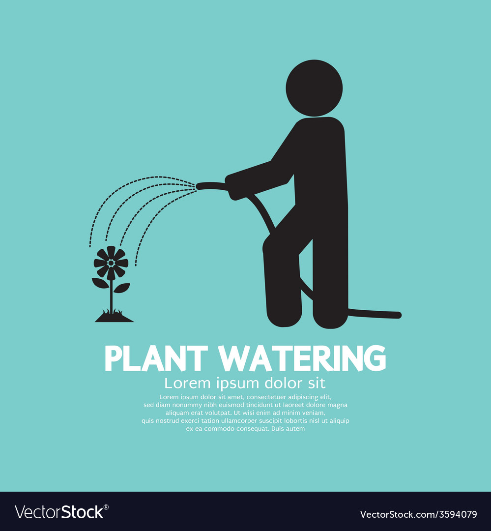 Plant watering with rubber hose tube vector | Price: 1 Credit (USD $1)