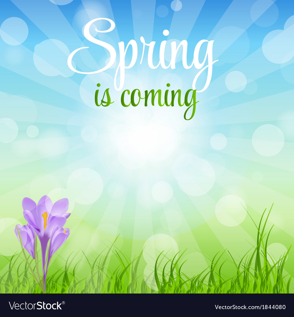Spring green background vector | Price: 1 Credit (USD $1)