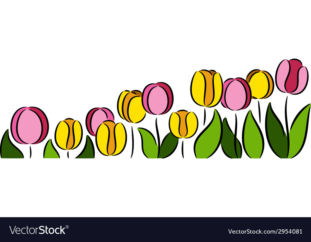 Tulips flowers vector | Price: 1 Credit (USD $1)