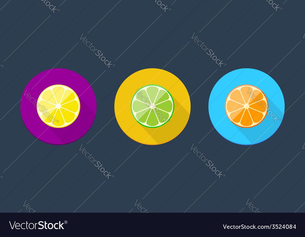 Citrus icon collection vector | Price: 1 Credit (USD $1)