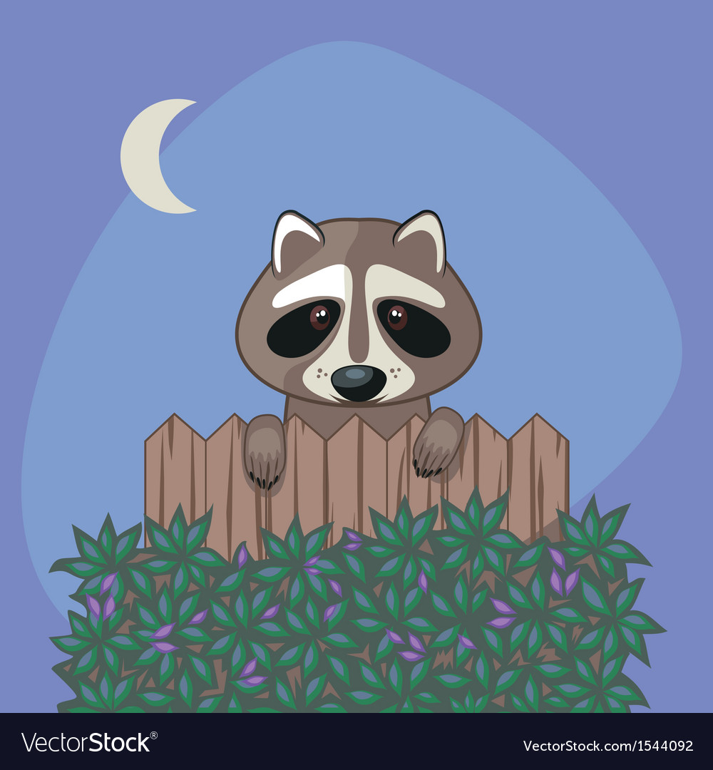 Cute raccoon vector | Price: 1 Credit (USD $1)