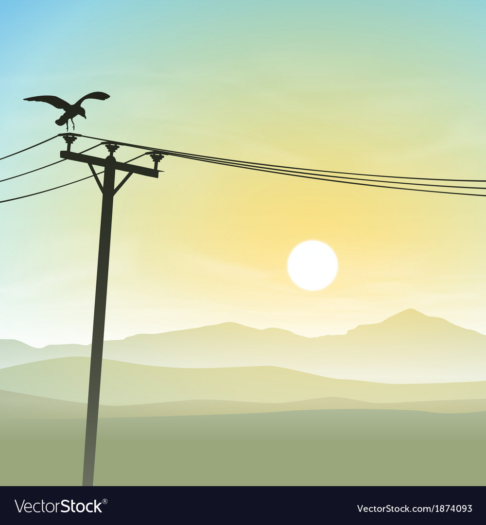 A bird on telephone lines vector | Price: 1 Credit (USD $1)