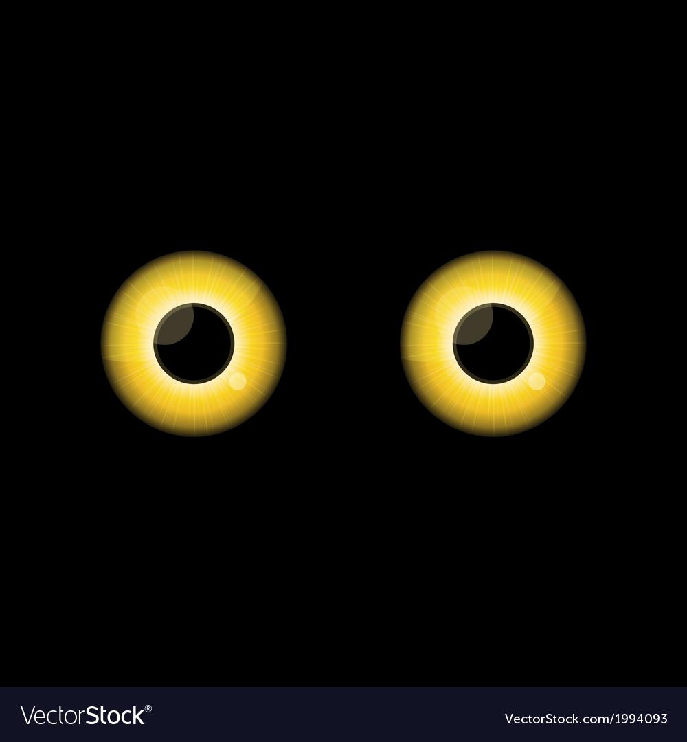 Yellow cat eyes in dark night vector   Price: 1 Credit (USD $1)