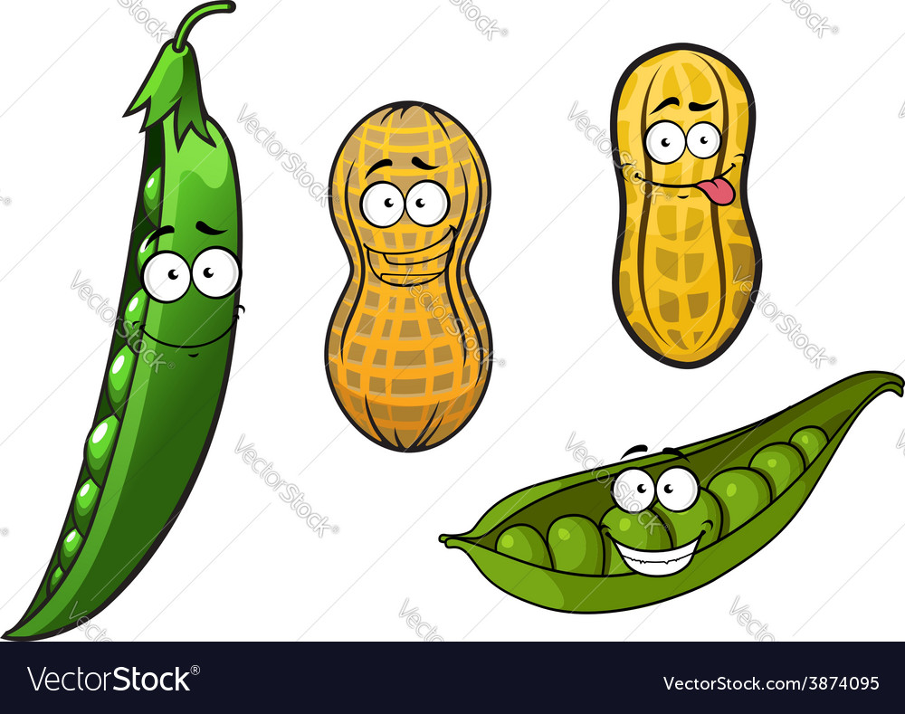 Cartoon opened green pea pods and peanuts in vector | Price: 1 Credit (USD $1)