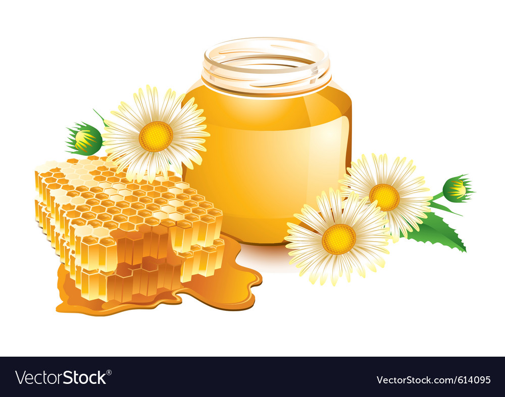 Honey and honeycomb vector | Price: 3 Credit (USD $3)