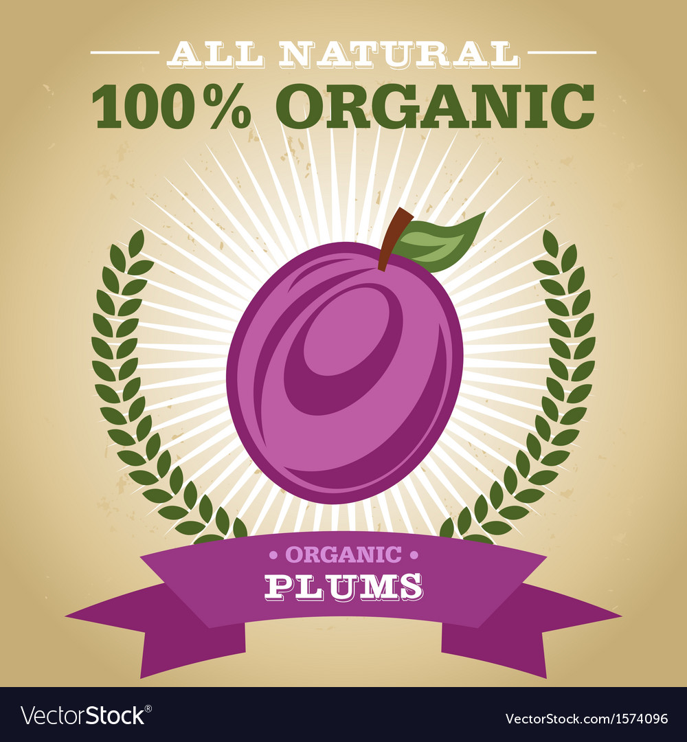 Organic plum vector | Price: 1 Credit (USD $1)